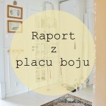 Metamorfozy – raport z placu boju