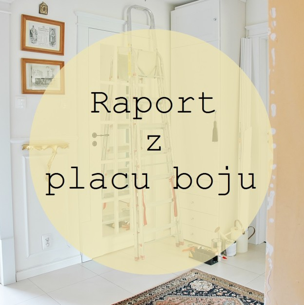 raport z placu boju