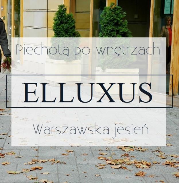 piechota po wnetrzach ELLUXUS