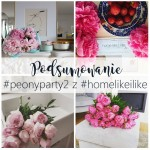 Finał peonyparty2