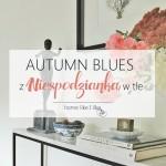 Autumn blues z niespodzianką w tle