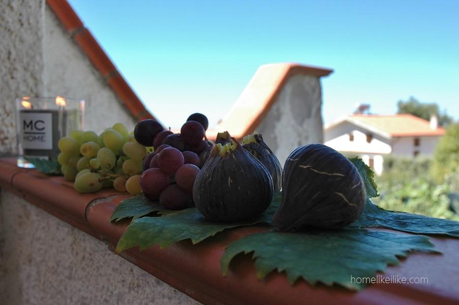 południowe owoce - homelikeilike.com
