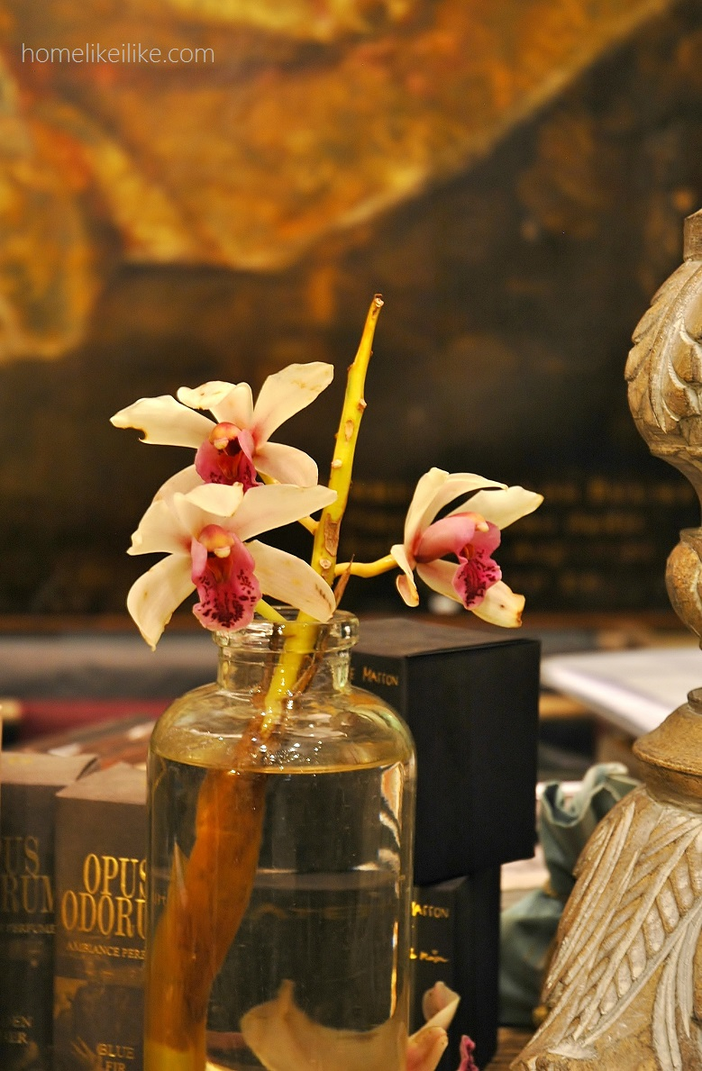 orchidea - homelikeilike.com