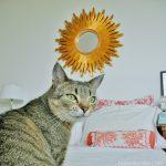 Lustro słońce, czyli kontrowersyjnie w sypialni